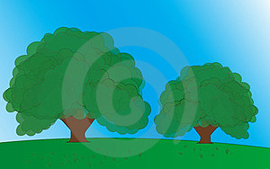 Green Trees Stock Images - Image: 23843694