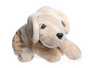 Plush Dog Royalty Free Stock Photos - Image: 23870418