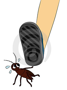 Scaredy Roach Stock Images - Image: 23974094