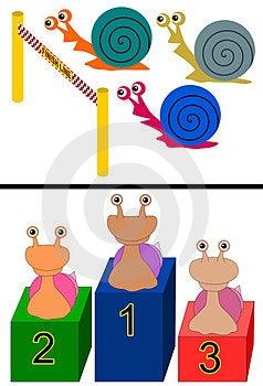 Snail Race Stock Image - Image: 23974111