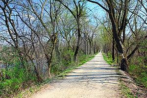 Spring Path Royalty Free Stock Image - Image: 23999356