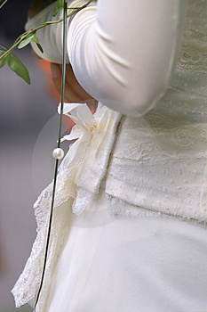 Wedding Dress Detail Free Stock Photography