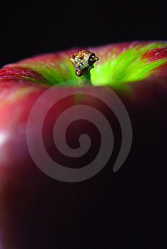 Apple Closeup Stock Photos