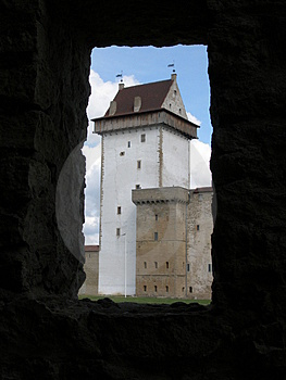 对Narva城堡的视图 库存图片