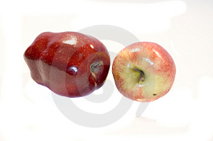 Apples Free Stock Image