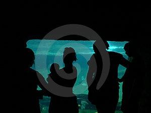 Aquarium bij de Dierentuin Stock Afbeelding