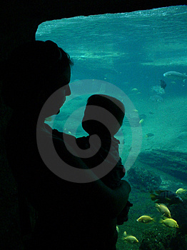 Mom & Baby At The Aquarium Stock Photography