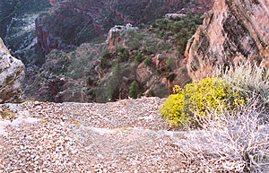 Canyon_5 grande Fotos de Stock