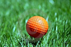 En Orange Golfboll Royaltyfri Bild - Bild: 2409756