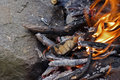 Fire, flames close up Stock Image