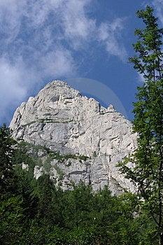 Eagles Wall Stock Image - Image: 24000561