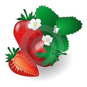 Passion Red Strawberries, With Leaves And Flowers Royalty Free Stock Images - Image: 24059319