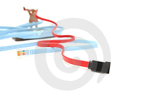 Model And Various Network Cable On Floor Royalty Free Stock Image - Image: 24062576