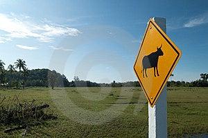 Animal Warning Sign Royalty Free Stock Photo - Image: 24099545
