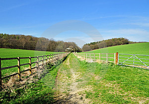 Grassy Track Between Fields Royalty Free Stock Image - Image: 24111816