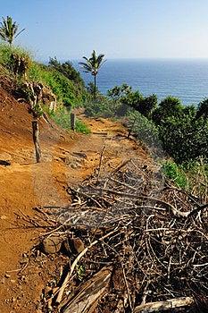 Beginning Of Awini Trail Big Island Hawaii Royalty Free Stock Photography - Image: 24116757