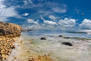 Sea And Rocky Coast Royalty Free Stock Photography - Image: 24183007