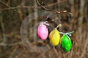 Easter Egg Stock Photos - Image: 24191113