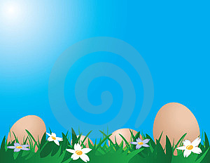 Chicken Eggs On The Grass Royalty Free Stock Image - Image: 24196056