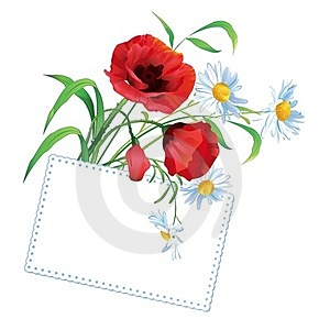 Colorful Flower Bouquet With Greeting Card Stock Photography - Image: 24196082