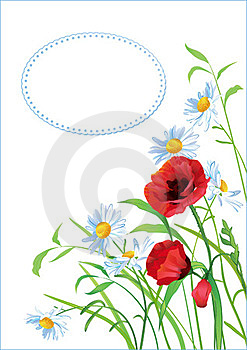 Greeting Card With Colorful Flowers Stock Images - Image: 24196564