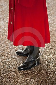 Royal Guard Royalty Free Stock Images - Image: 24247119