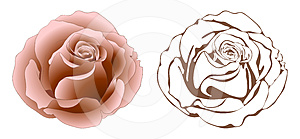 Roses. Royalty Free Stock Images - Image: 24289379
