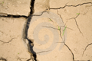 Life Prevails - Global Warming Royalty Free Stock Photos - Image: 2435318