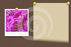 An Old Photo Of Flowers And Paper Royalty Free Stock Images - Image: 24365939