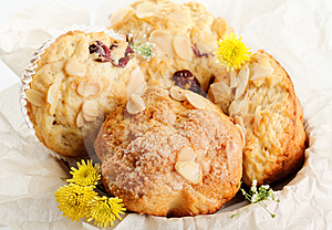 Muffins Stock Photos - Image: 24381323