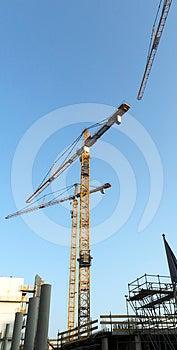 Cranes Stock Photo - Image: 24413460