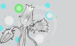 Tulips02 Royalty Free Stock Photos - Image: 24418758