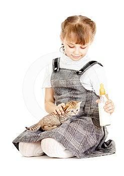 Girl Feeding British Kitten Royalty Free Stock Photography - Image: 24428917