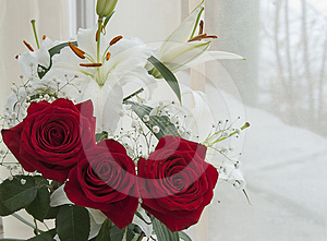 White Lily And Red Rose Stock Photography - Image: 24468752