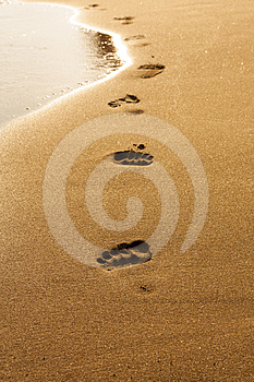 Footprints In Wet Sand Of Beach Stock Image - Image: 24482001