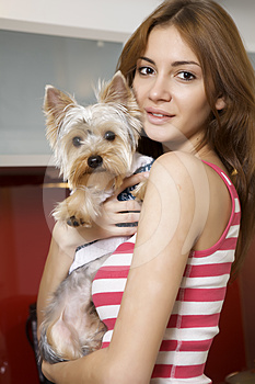 Cute Young Girl With Her Yorkie Puppy Royalty Free Stock Photos - Image: 24486858