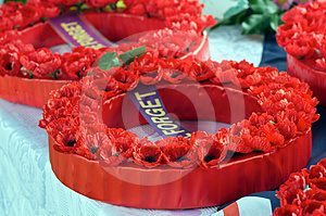 Wreath Of Poppies Royalty Free Stock Photo - Image: 24486985