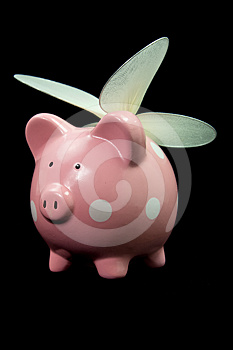 When Pigs Fly Stock Images - Image: 24512174