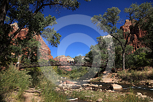 Bridge In Zion NP Stock Images - Image: 24523484