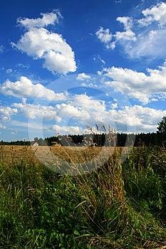Landscapes Royalty Free Stock Photo - Image: 24541545