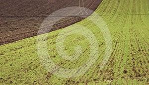 Farm In Val Of Recanati, Italy Royalty Free Stock Image - Image: 24543736