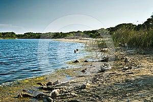 Lake Albufera Royalty Free Stock Photo - Image: 24551485