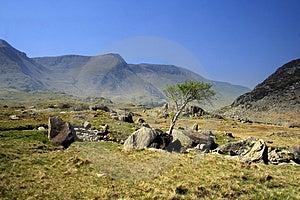 Snowdonia Stock Image - Image: 2467121