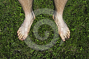 Bare Feet On Green Grass Royalty Free Stock Image - Image: 24608266