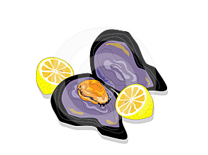 Moules Image stock - Image: 24612831
