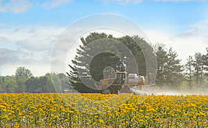 Spraying Agricultural Chemical Stock Photo - Image: 24622010