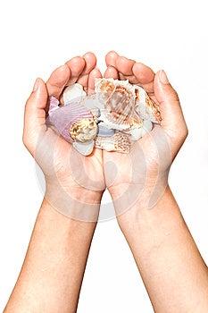 Shellfish On Hand Royalty Free Stock Photography - Image: 24629597