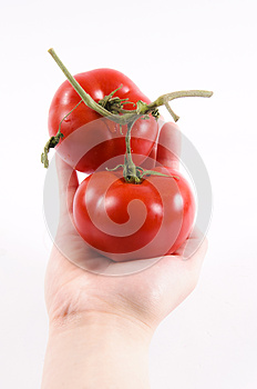 Tomatoe Hand Stock Photos - Image: 24632393