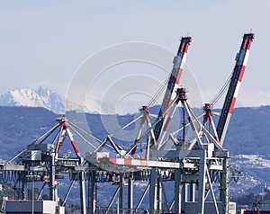 Cranes Stock Images - Image: 24652044