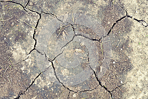 Dry Ground Royalty Free Stock Images - Image: 24662949